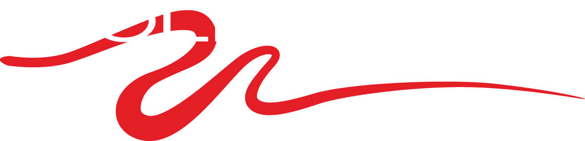 Bold Design Kitchens
